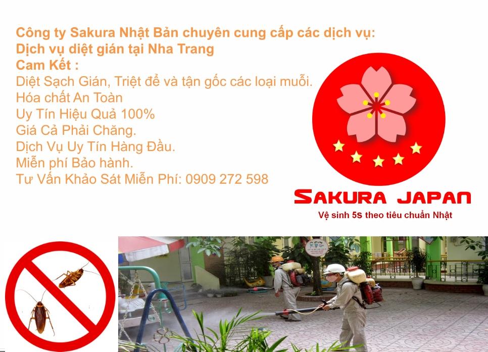 Dịch vụ diệt gián tại Nha Trang uy tín chất lượng Sakura