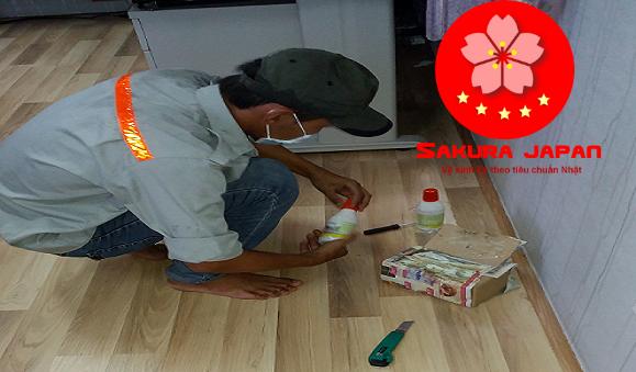 Dịch vụ diệt mối mọt Nha Trang Sakura