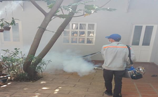 Dịch vụ diệt kiến tại Nha Trang